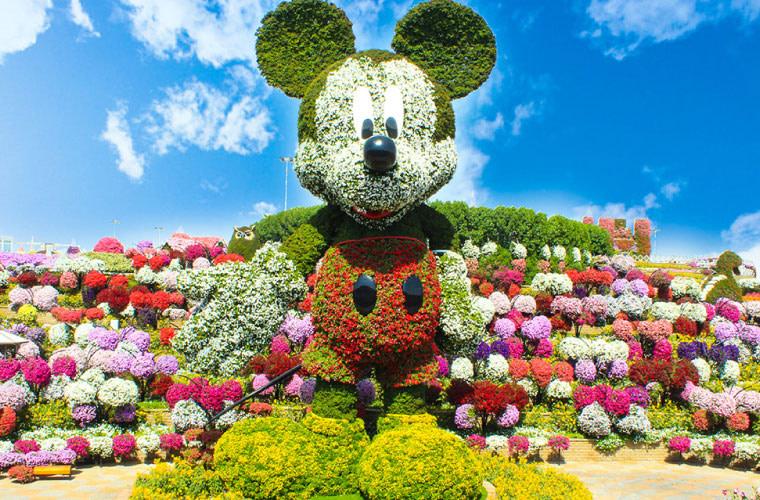 Dubai Miracle Garden Mickey Mouse by VisaDekho