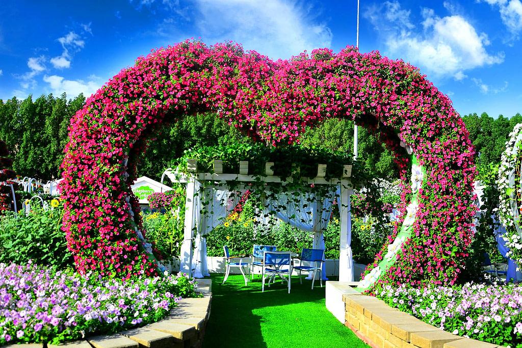 Cabanas at Dubai Miracle Garden by VisaDekho