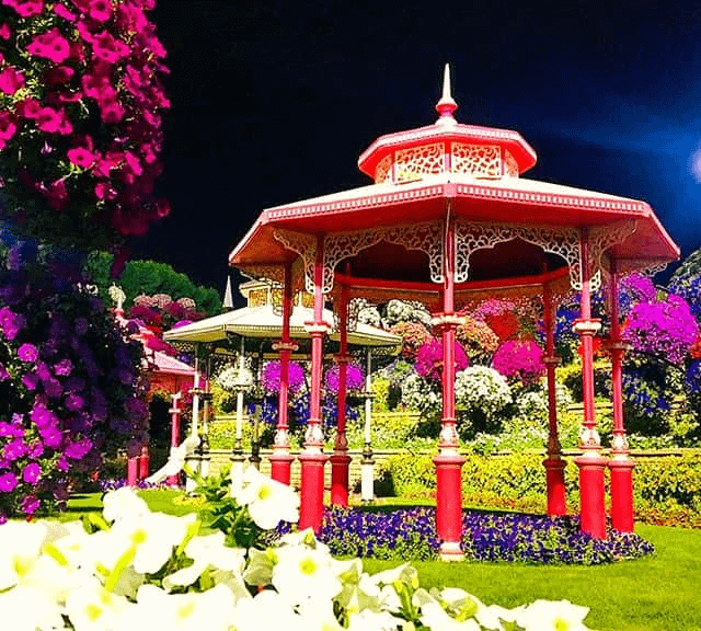 Gazebos at Dubai Miacle Garden By VisaDekho