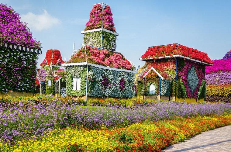 Dubai Miracle Garden Lost paradise by VisaDekho